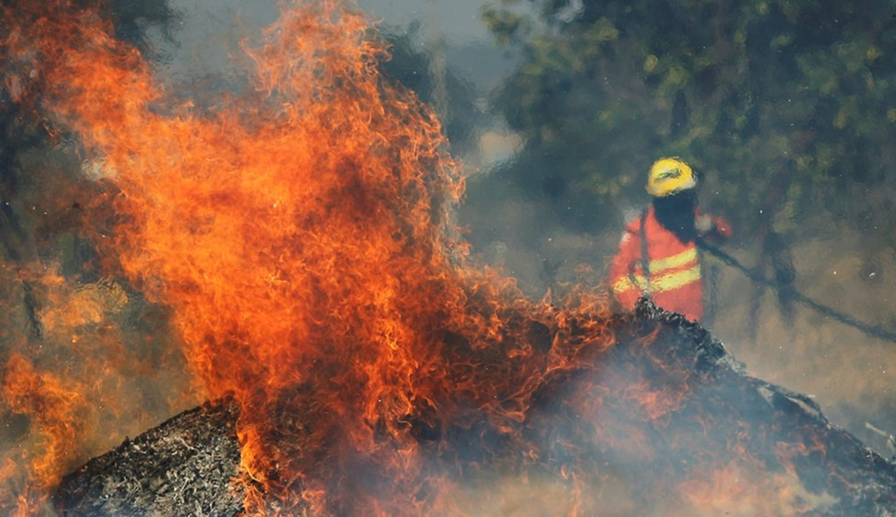 Incendios en el Amazonas: cómo la selva se volvió más inflamable pese a ser de los lugares más húmedos del mundo