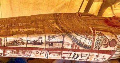 Descubren 14 sarcófagos de hace 2 mil 500 años en Egipto