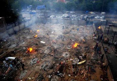 COVID-19 acecha a 160 mexicanos que residen en la India